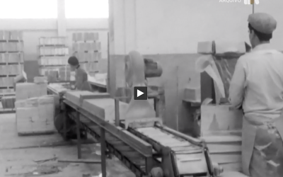 RTP Play: Doc on marble deposits in Portugal